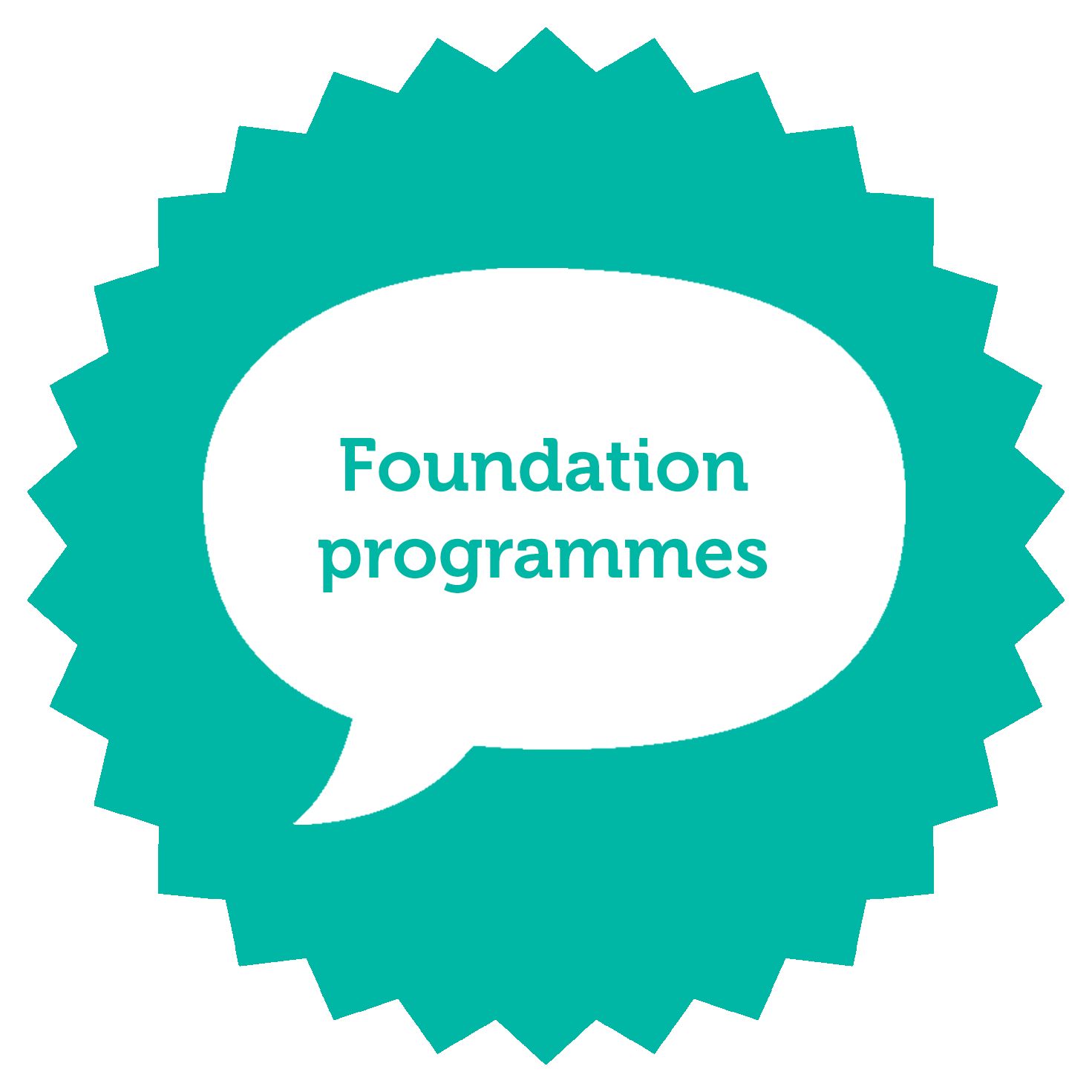 I choose to join a foundation programme !